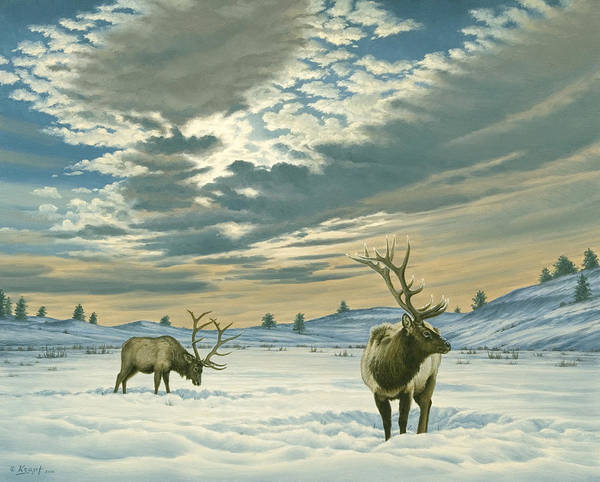 Wall Art - Painting - Winter Sky-elk   by Paul Krapf
