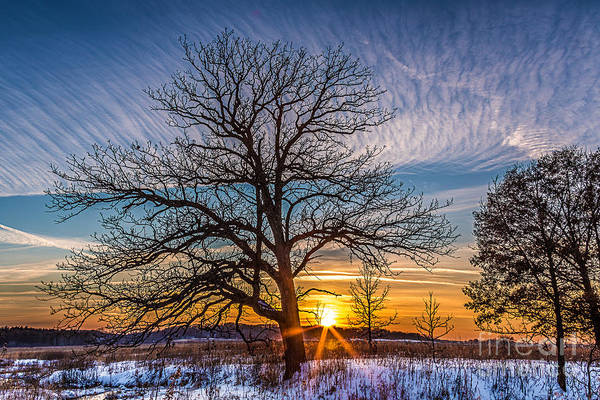 Wall Art - Photograph - Winter Solace by Andrew Slater
