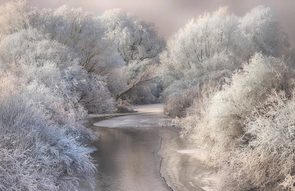 Creek Photograph - Winter Song by Sebestyen Bela