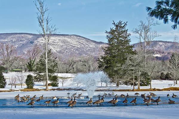 Photograph - Winter Spa by Jemmy Archer