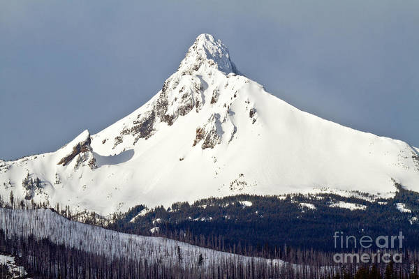 Photograph - Winter Storm Over Mt. Washington by Stuart Gordon