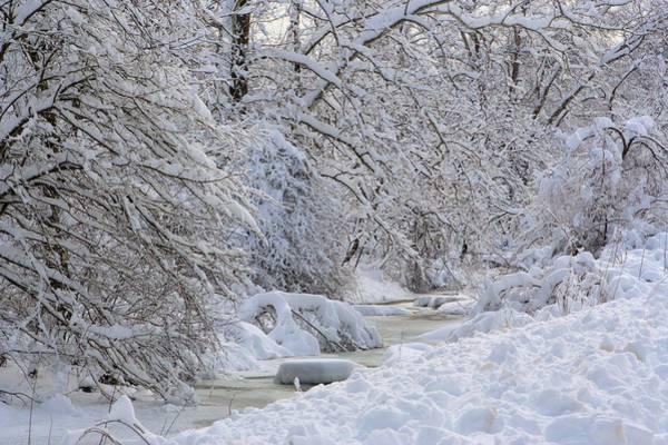 Photograph - Winter Stream by Gordon Elwell