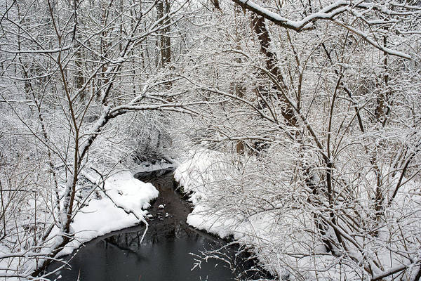 Photograph - Winter Stream Snow Scene by Clint Buhler