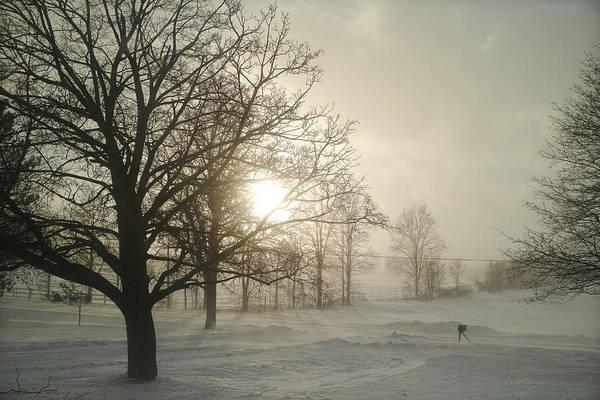 Photograph - Winter Sun by Lars Lentz