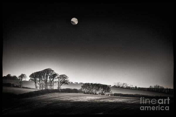 English Countryside Photograph - Winter Sun by Rod McLean