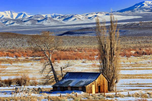 Wall Art - Photograph - Winter Sunlight  by Kathleen Bishop