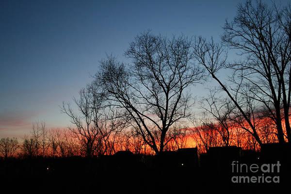 Photograph - Winter Sunset by Karen Adams