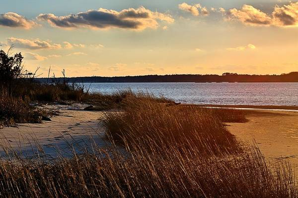 Winter Sunset On The Cape Fear River Art Print