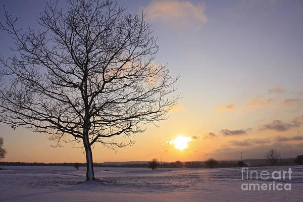 Winter Sunset Uk Art Print