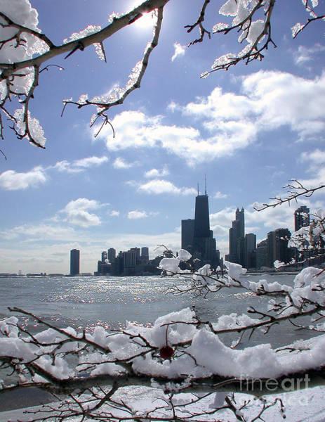 Photograph - Winter Sunshine by Martin Konopacki