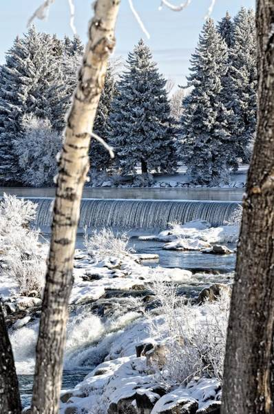 Bonneville County Photograph - Winter Time At The Falls by Image Takers Photography LLC - Laura Morgan
