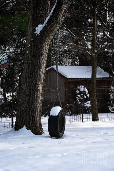 Photograph - Winter Tire Swing by Frank J Casella