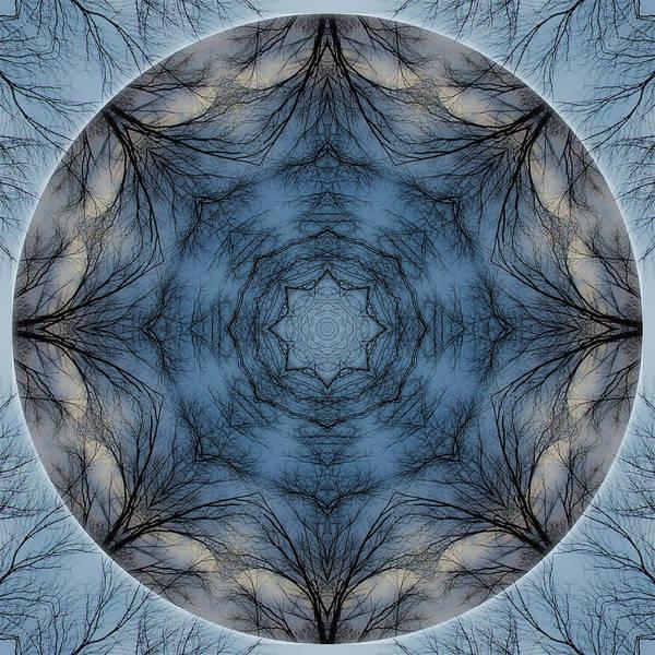Photograph - Winter Tree Mandala 4 by Beth Sawickie