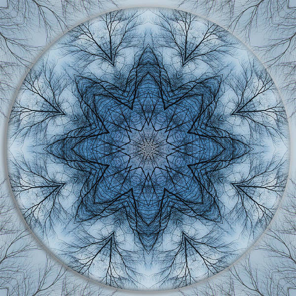 Photograph - Winter Tree Mandala 5 by Beth Sawickie