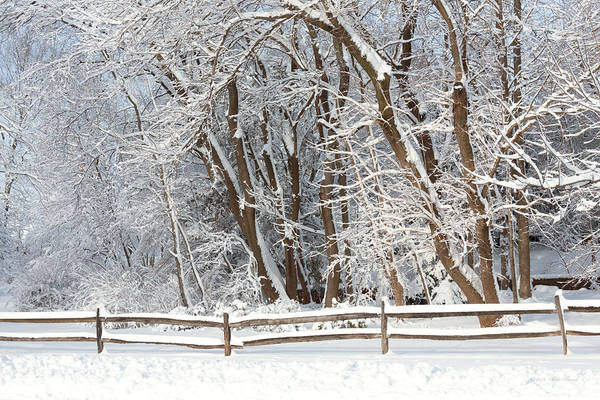 Photograph - Winter - Westfield Nj - Snow Day by Mike Savad