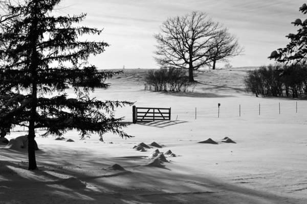 Rockville Photograph - Winter White by Jodi Pflepsen