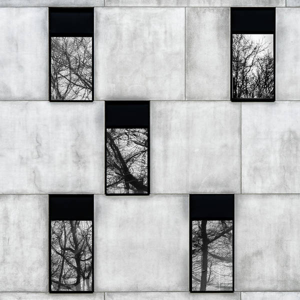 Wall Art - Photograph - Winter Windows by Luc Vangindertael (lagrange)