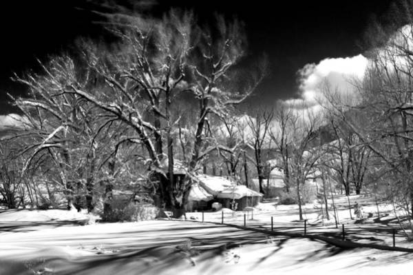 Photograph - Winter Wonderland by Cat Connor