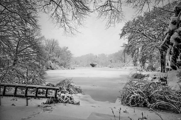 Photograph - Winter Wonderland by Chris Lord
