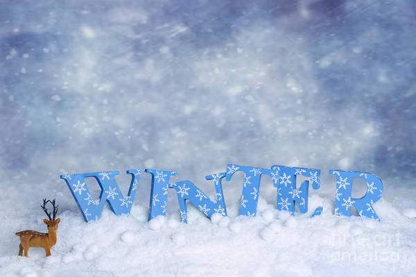 Snowflake Photograph - Winter Wonderland by Amanda Elwell