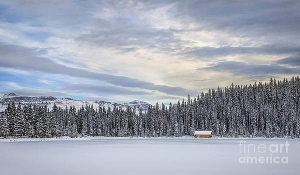 Banff Wall Art - Photograph - Winter Wonderland by Evelina Kremsdorf