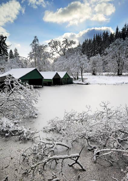 Photograph - Winter Wonderland by Grant Glendinning