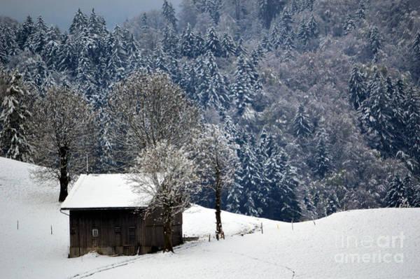 Photograph - Winter Wonderland In Switzerland by Susanne Van Hulst