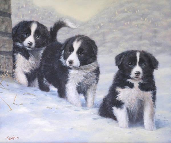 Border Collie Painting - Winter Wonderland by John Silver