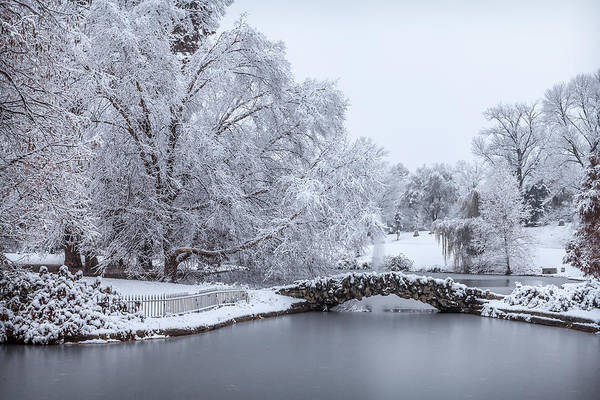 Photograph - Winter Wonderland by Keith Allen