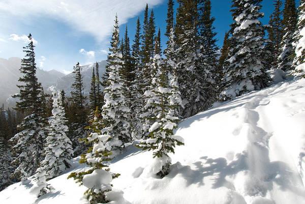 Photograph - Winter Wonderland by Cascade Colors