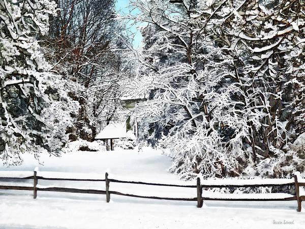 Photograph - Winter Wonderland by Susan Savad