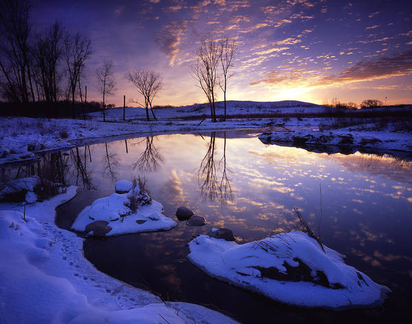 Photograph - Winter World by Ray Mathis