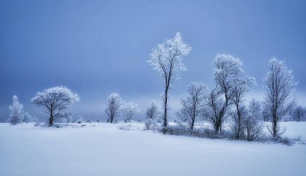 Wall Art - Photograph - Winterland by Christian Duguay