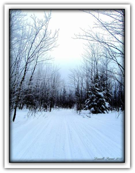 Winterlude In Abitibi Temiscamingue Quebec  Art Print