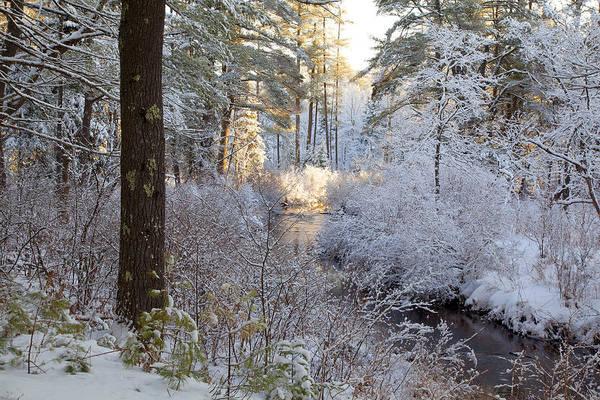 Photograph - Winter's First Light by Larry Landolfi