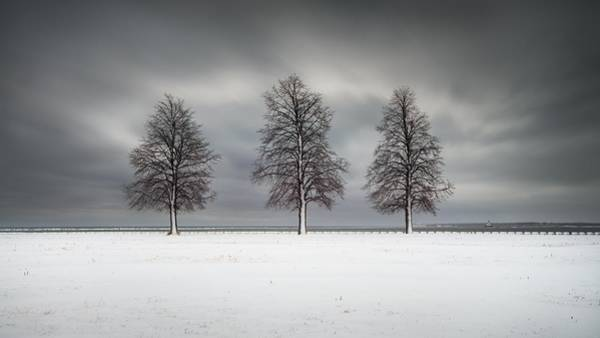 Photograph - Winter's Halo by Josh Eral