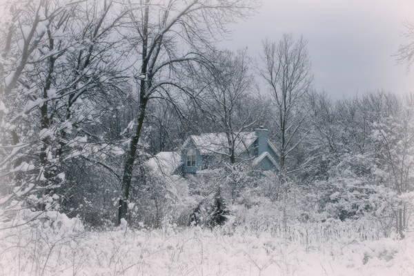 Photograph - Winters Silence by Kay Novy