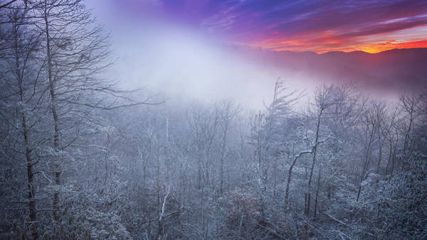 Photograph - Winter's Sunrise by Maria Robinson