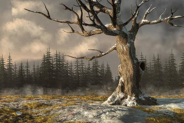 Digital Art - Winterscape by Daniel Eskridge