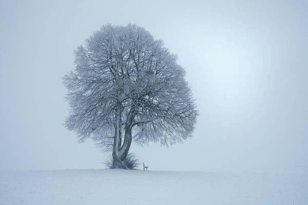 German Photograph - Winterstimmung by Nicolas Schumacher