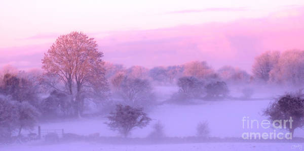 Photograph - Wintery Irish Countryside by Imagery by Charly
