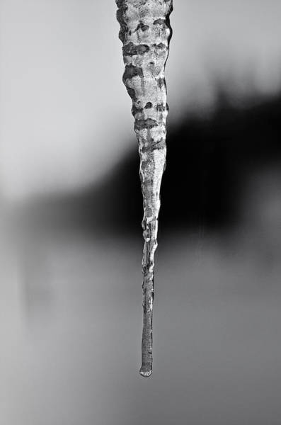 Icicles Wall Art - Photograph - Wintery Ways by Susan Capuano
