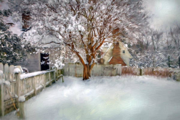Photograph - Wintry Garden by Jerry Gammon