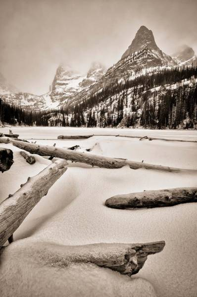Snowshoe Photograph - Wintry Logs At Lake Odessa by Mike Berenson