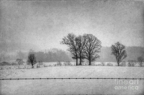 Photograph - Wintry Scene by Dan Friend
