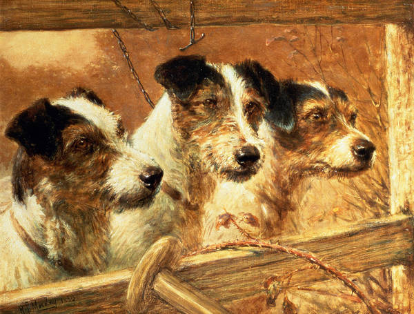Jack Russell Wall Art - Painting - Wirey Workers by R.S. Moseley