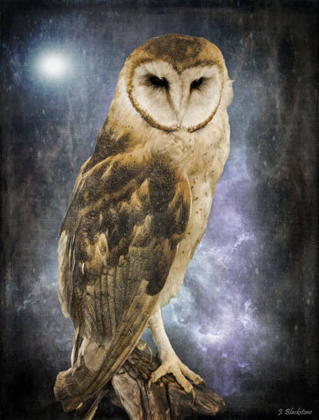 Photograph - Wise Old Owl - Image Art By Jordan Blackstone by Jordan Blackstone