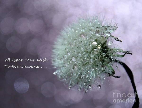 Saying Photograph - Wish To The Universe by Krissy Katsimbras