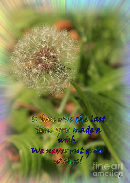 Little Things Photograph - Wishes by Sandra Clark