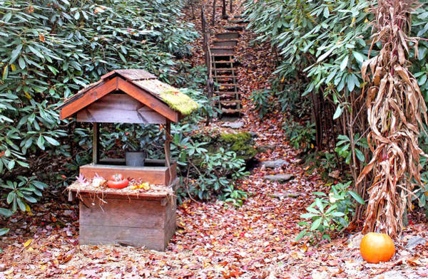 Photograph - Wishing Well At The Seven Foxes by Duane McCullough